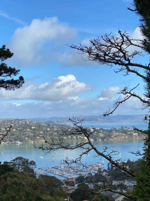 Sausalito walk - view from above