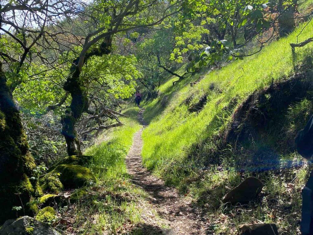 Hiking in California in early spring