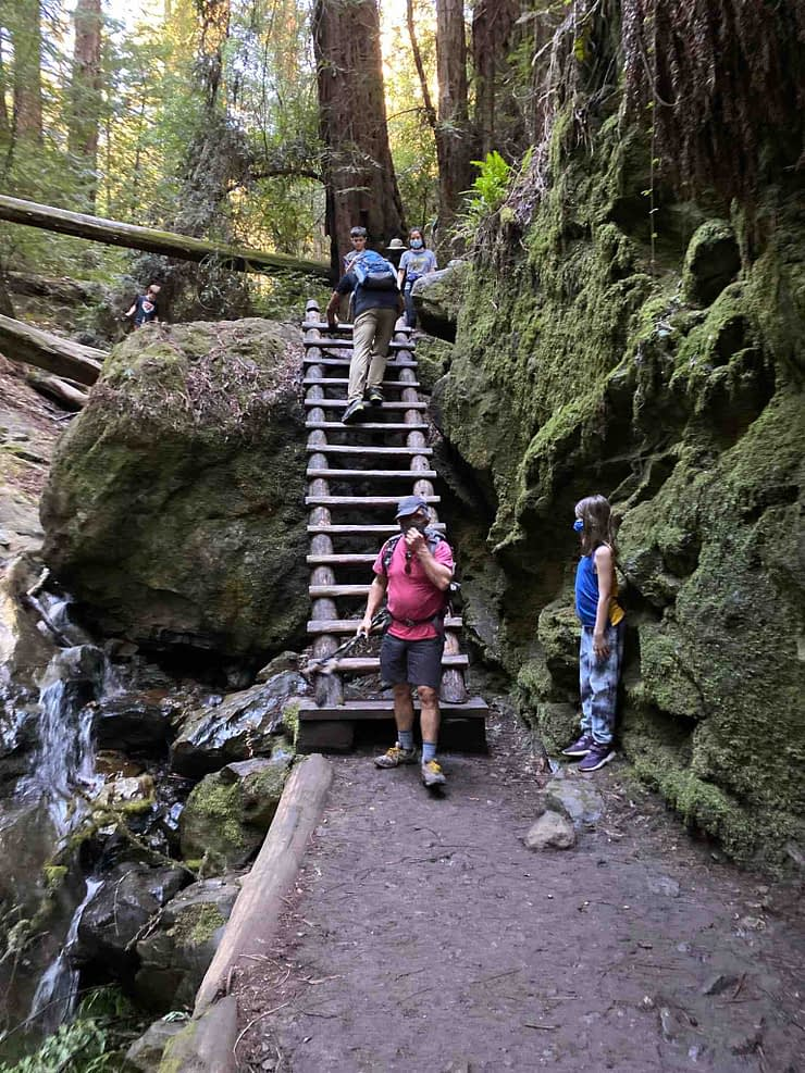 Ladder of Steep Ravin, California hike