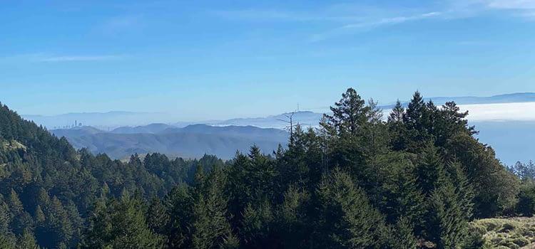 Mount Tamalpais: A breathtaking hiking in California